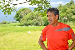 DSC_0046 (kenken.marilag) Tags: flower cow rice philippines farming nueva baka palay ecija lupao