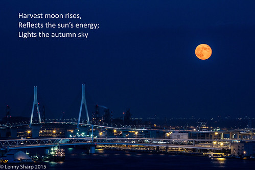 "Moonrise - Haiku • <a style=""font-size:0.8em;"" href=""http://www.flickr.com/photos/55493827@N04/21439052690/"" target=""_blank"">View on Flickr</a>"