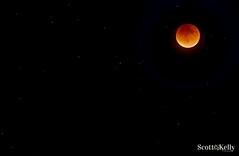 Blood Moon 2015 (smkelly2000) Tags: sky moon southwest night stars eclipse florida astro full fullmoon clear naples fl eastern harvestmoon lunar lunareclipse bloodmoon starlight 239 immokalee swfl northnaples 34119