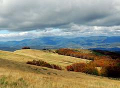 Vetta del Pratomagno - 1 (anto_gal) Tags: alberi firenze toscana autunno montagna casentino arezzo pratomagno valdarno 2015 vetta lorociuffenna