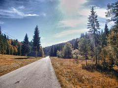 Indian Summer Tirol (Hannes Mauerer) Tags: road autumn summer mountain fall berg forest austria tirol sterreich tour strasse indian herbst wiese berge motorcycle wald indiansummer weg motorrad sudelfeld thiersee landl mauerer hinterthiersee jmauerer