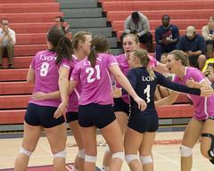 DJT_3460 (David J. Thomas) Tags: sports athletics women lions volleyball arkansas scots batesville lyoncollege freedhardemanuniversity