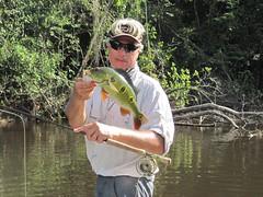 Amazonia 2012 (61)