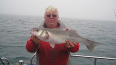"Roy Shipway early November Bass • <a style=""font-size:0.8em;"" href=""http://www.flickr.com/photos/113772263@N05/22718705175/"" target=""_blank"">View on Flickr</a>"