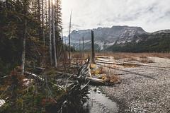 Braids of Burstall Creek (Matthew Hicks Photography) Tags: mountain canada mountains calgary nature landscape kananaskis landscapes banff canmore yyc smithdorrien kananaskiscountry canadianrockies kcountry burstallpass canadianrockymountains banffpark