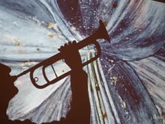 26/11 The trumpet shall sound (Nemossos) Tags: shadow play trumpet ombre sound cavalry chinoise bugle cuivre trompette cavalerie clairon phovember