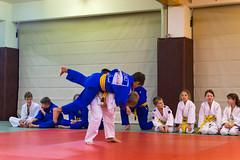 VfL Wolfsburg Judo-1.jpg