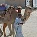 doha camel race (18)