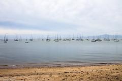 IMG_7138 (Borgonovo Fotografias) Tags: praia mar santoantoniodelisboa