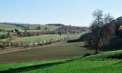 The Marches in Winter (Nic Joynson) Tags: coal stokesay rugeley portbury 66554 6m61