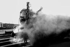 Mariembourg 2016-09-25 (saigneurdeguerre) Tags: europe europa belgique belgi belgium belgien belgica ponte antonioponte aponte ponteantonio saigneurdeguerre canon 5d mark iii 3 eos reflex mariembourg provincedenamur chemindefervapeurdes3valles cfv3v locomotive locomotivevapeur vapeur