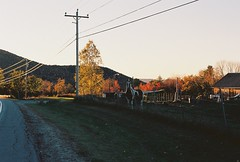 Low Light Horse Farm (Nsharp17) Tags: nikon nikonfe film 35mm kodak ektar ektar100 horse farm goldenhour vermont foliage fall autumn orange