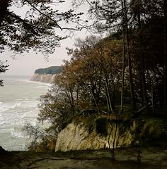 Medium format film image (DidaK) Tags: baltic germany forest ocean rugen sea trees zeissikonta mediumformat 120film prora400 cliffs film