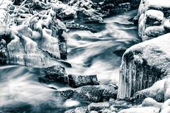 Rapid (johanbe) Tags: rapid monochrome blackandwhite stream fors svartvit nature fart speed vatten water waterfall snow ice sn is bw winter