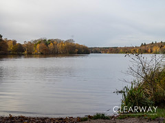 Autumn at Virginia Water (Clearway Photography) Tags: landscape virginiawater water lake surrey autumn trees