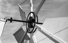 Burnham Overy Staithe Windmill (munkt0n) Tags: leicam6 nationaltrust windmill burnhamoverystaithe leicasummicron35mmf20asph ilford film hp5 norfolk