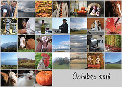 October 2016 (keepps) Tags: mosaic month bighugelabs