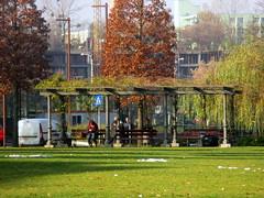 Cluj-Napoca - Iulius Park (Bogdan Pop 7) Tags: romania roumanie romnia cluj clujnapoca claudiopolis kolozsvr klausenburg kolozsvar erdely erdly europe ardeal transylvania transilvania fall autumn toamna 2016 iulius parc park iuliusparc parculiulius
