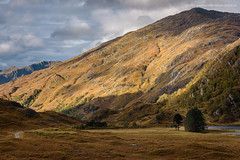 Return to Kinloch Hourn (Damon Finlay) Tags: nikon d750 nikond750 nikkor 80200mm f28 nikkor80200mmf28 highlands islands highlandsandislands scotland mountains wilderness kinloch hourn kinlochhourn glengarry scottish scottishhighlands landscape autumn fall