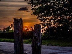 Coucher de soleil (Lise1011) Tags: olympusomd olympus nature cloture campagne sunset coucherdesoleil ngc