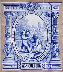 Azulejos. Colegio Fundacion Caldeiro (Madrid) (Juan Alcor) Tags: azulejos tiles madrid colegio fundacion caldeiro agricultura