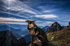 Karwendel_9926.jpg (Comperia) Tags: bege berg karwendel landschaft wandern
