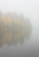 Misty morning (Antti Tassberg) Tags: 50mm aamu autumn colors fall fog forest jrvi laaksolahti lake landscape lens mets mist morning pitkjrvi prime reflection ruska sumu syksy jrvi mets pitkjrvi espoo