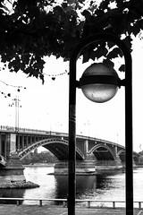 View of the bridge (WvBadger) Tags: bridge germant germany mainz