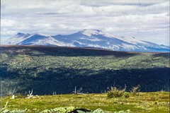 1998 Ural Mountains (Alexander Kondakov) Tags: 1998 kodak kodakektachromee100vs landscape lens perm photobyalexanderkondakov russia ural uralmountains film minolta700si minoltaaf2885mmf3545 minoltaaf75300mmf4556 old