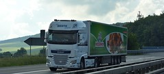 D - Beste >Wiesenhof< DAF XF 106 SSC (BonsaiTruck) Tags: wiesenhof daf xf 106 lkw lastzug lastwagen truck trucks lorries lorry camion