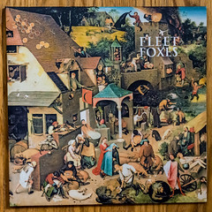 new vinyl (jojoannabanana) Tags: 3662016 fleetfoxes folk music lp squareformat square sungiant vinyl