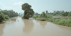 Laos : Si Phan Don #2 (foto_morgana) Tags: analogphotography analogefotografie archipelago asia indochina landscape laos mekongriver nikoncoolscan outdoor panoramic photographieanalogue river scenic siphandon travelexperience trees vuescan water on1 on1effect10suite ononephotos