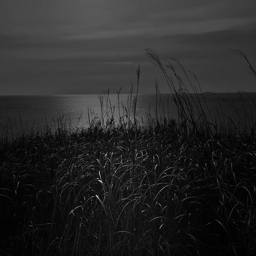#island #grass #noir #bnw_planet #monochromia #bnw_city #rusmobphoto #iphoneartmobile #kostasleko
