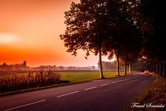 In the road (the_rush_rain02) Tags: coucher soleil alsace lumiere light route road explore explorer