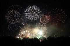 Remember, remember... (Treflyn) Tags: remember 5th november fifth battersea london fireworks park bonfire night