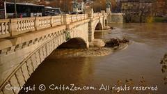 Torino (15) (cattazen.com) Tags: alluvione torino po esondazione parcodelvalentino murazzi pienadelpo cittditorino turin piemonte