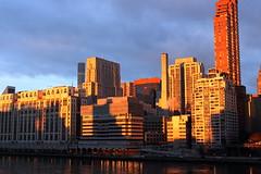 Morning Light 6 (Roosevelt Island/NYC) (chedpics) Tags: newyork rooseveltisland eastriver