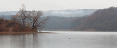 RBG Cootes Paradise (Umer Javed) Tags: cootes panorama cans2s ontario hfg hamilton autumn nature landscape conservation blending