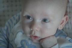 Bradley Jr. (Shannonlr79) Tags: 1nephew posingprofessional gq chillin