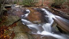 Flowing... (JESS PUIGMART) Tags: creek montseny unesco catalunya catalonia barcelona forest foret fall autumn automne outono tardor otoo