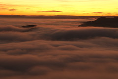 Mists In The Afterglow (Derbyshire Harrier) Tags: mist fog inversion 2016 november easternmoors curbaredge peakdistrict peakpark evening dusk afterglow sunset derbyshire rspb nationaltrust waves glow silhouette trees yellow layers