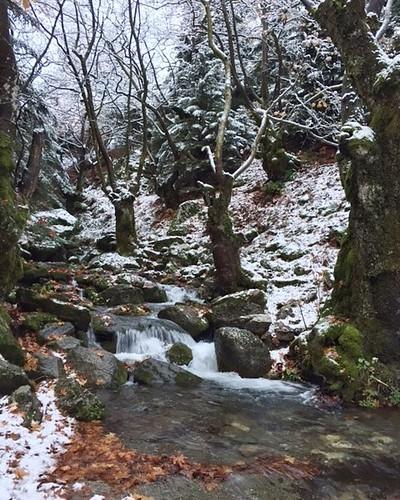 Φωτογραφίες από τον χιονισμένο Ταΰγετο: Τα πρώτα χιόνια εμφανίστηκαν ήδη στα ορεινά. Ο αναγνώστης μας Γιώργος Κουτσουμπός μοιράζεται μαζί σας φωτογραφίες από τον χιονισμένο Ταΰγετο. #photography #photo #photos#photoshoot#pic #pics #picture #photoaday#snap
