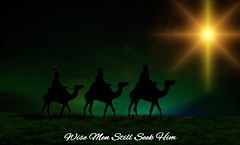 Wise Men (tcjakob) Tags: wise men seek him camel star green black yellow