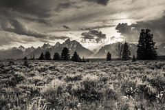 Sunbeams over the Grand Tetons (Claire Ingram) Tags: grandtetons