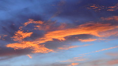 Another Pastel Sunrise (Jim Mullhaupt) Tags: morning pink blue red wallpaper sky orange sun color tree weather silhouette yellow clouds sunrise landscape dawn nikon flickr florida pastel palm exotic p900 tropical coolpix bradenton sunup mullhaupt cloudsstormssunsetssunrises nikoncoolpixp900 coolpixp900 nikonp900 jimmullhaupt