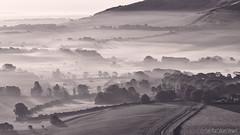 Mist and Shadows (Sue MacCallum-Stewart) Tags: mist nature sunrise sussex mono blackwhite shadows earlymorning fields bopeep southdownsnationalpark