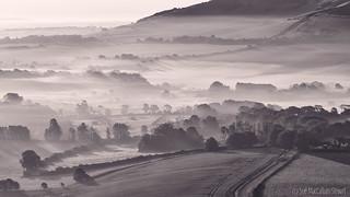 Mist and Shadows