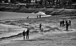 Low tide-Town beach-Torbay.