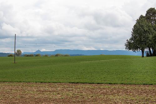 Le château de Hohenzollern au loin dans le Jura souabe