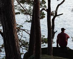 Frn III (Gustaf_E) Tags: forest landscape island skne woods sweden skog sverige paddling hst landskap  kvll kanot paddla frn peteralbrecht man3035r filkesjn